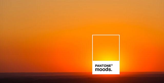ERA404 Press: ERA404 to Sunset Pantone Moods